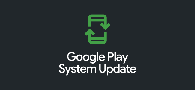 """The Google Play """"System Update"""" logo."""