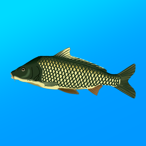 True Fishing. Fishing simulator 1.14.3.658 APK MODs Unlimited money free Download on Android